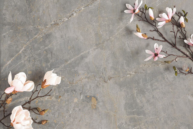Aparici Dstone by the Tile Company